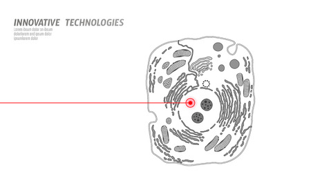 Microscopic animal cell. Modified GMO human cell gene therapy engeneering. White scheme red laser vector illutration art Vector Illustration