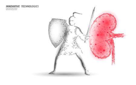 Low poly 3D human kidney shield protect. Medicine recovery technology drug medicine concept.