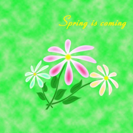 Three flowes on the abstract green background Stock Photo - 4609311