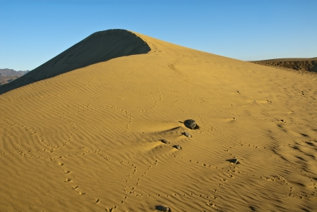 Maspalomas dune with footprints of birds photo