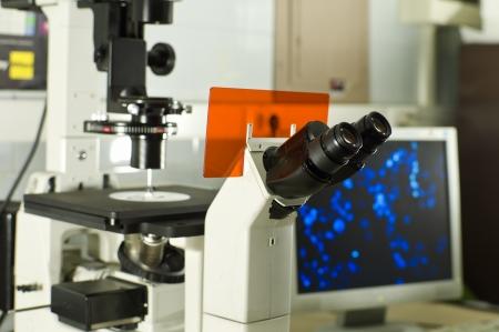 innoveren: Het is een contrast microscoop in voorgrond en een computerscherm met menselijke cellen in de achtergrond Stockfoto
