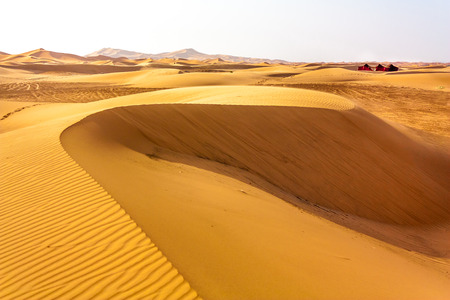 sandhills: Sahara dunes under the extreme hot sun and the beduin tends to cool you down. Stock Photo