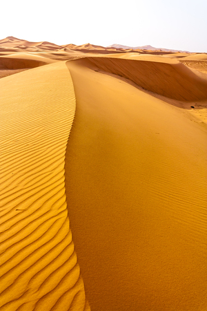 sandhills: Dunes of Sahara desert with the typical patterns formed by the wind.