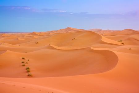 sandhills: Saara deseert dunes against the sunrise sky, displaying a beautiful color contrast.