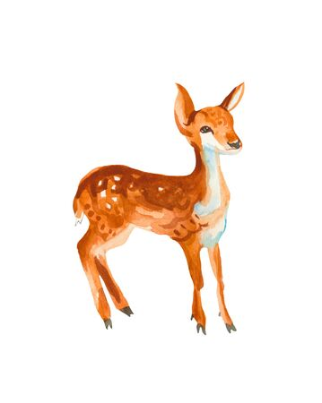 One watercolor brown fawn. Animal illustration on a white isolated