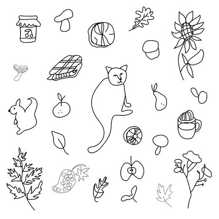 Autumn set with cat,mushrooms,leaves,cappuccino, squirrel,plaid,fern,jar with jam,mandarin,pear, firewood,sunflower.Clip art black line in doodle style. Design for card,packages,web.