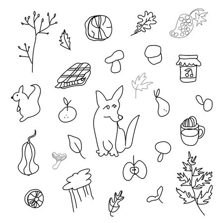 Autumn set with corgi dog,mushrooms,leaves,cappuccino, squirrel,plaid,fern,jar with jam,mandarin,pear, firewood,sunflower.Clip art black line in doodle style. Design for card,packages,web.