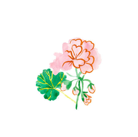 One watercolor cute pink geranium with green leaf hand drawn. Spring flower illustration on a white isolated background. Design for stickers, cards, banners, posters, packaging and textiles. 版權商用圖片