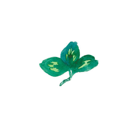 One watercolor cute green leaf of a clover hand drawn. Irish Day of Patrick illustration on a white isolated background. Design for stickers, cards, banners, posters, wrapping paper and textiles.