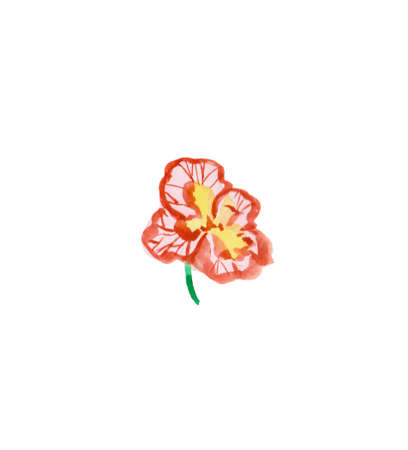 One watercolor pink and red viola hand drawn. Spring flower illustration on a white isolated background. Design for stickers, cards, banners, posters, wrapping paper, wallpaper, packaging. 写真素材