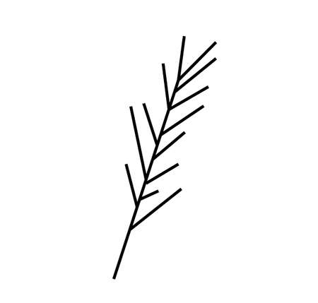 Vector rosemary branch with a black line.Simple food and cooking illustration in doodle style on a white isolated background hand drawn.Design for social networks, web, advertising, menus, recipes.