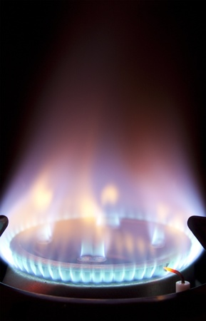 gas cooker: bright blue flame burning on a gas hob