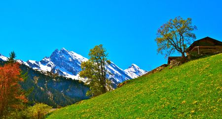 nestled: An isolated cabin nestled amongst the Swiss Alps