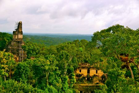 jungle scene: Some of the Mayan Ruins of Tikal National Park in Guatemala Stock Photo