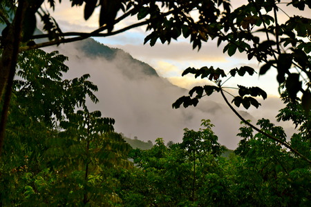 shrouded: A view of mountains shrouded in mist at Semuc Champey, Guatemala Stock Photo