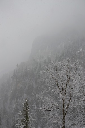 barely: A mountain and forest in the Bavarian countryside barely visible through the snow