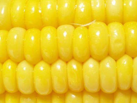macro of corn