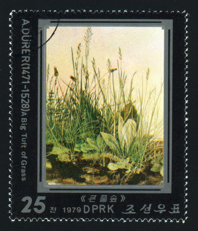 albrecht: NORTH KOREA - CIRCA 1979: A post stamp printed in North Korea shows A Big Tuft of Grass by Albrecht Durer, circa 1979