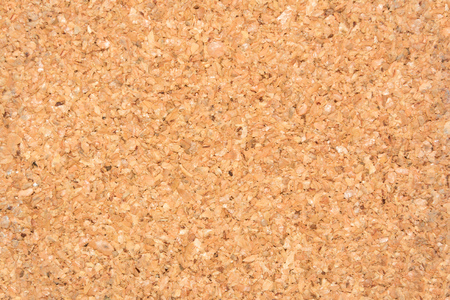 cortical: Cortical texture of wood. natural color and texture. Cork