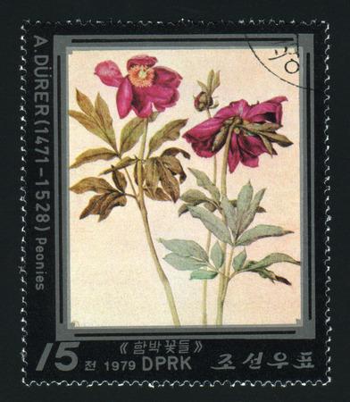 durer: NORTH KOREA - CIRCA 1979: A post stamp printed in North Korea shows flower, circa 1979