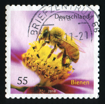 GERMANY - CIRCA 2010: A post stamp printed in the Germany shows Honey Bee and Flower, circa 2010.