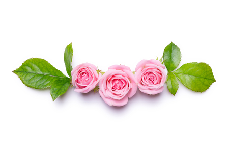 Pink roses on a white background. Border of flowers. Pattern for invitation card. Flat lay design, view from above