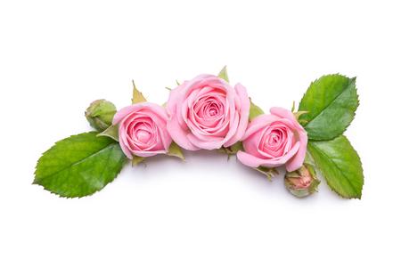 Roses roses sur un fond blanc. Bordure de fleurs Modèle pour carte d'invitation. Design plat, vue d'en haut