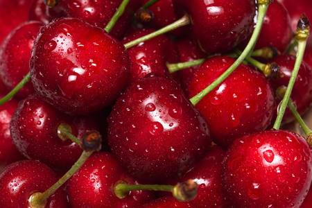 Fresh raw ripe cherries with water drops Stock Photo