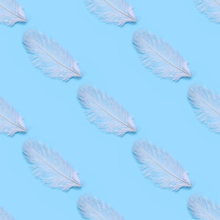 Seamless pattern of white swan feathers on a blue background. Stock Photo