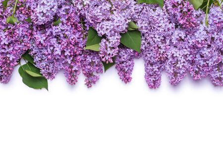 Border of lilac flowers. A bouquet of purple flowers is isolated on white background. View from above, flat lay concept. Stock fotó