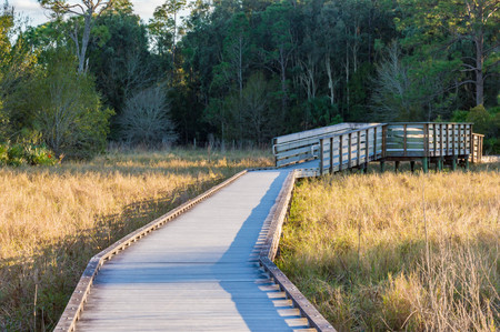 Nature trail in North Fort Myers, Florida