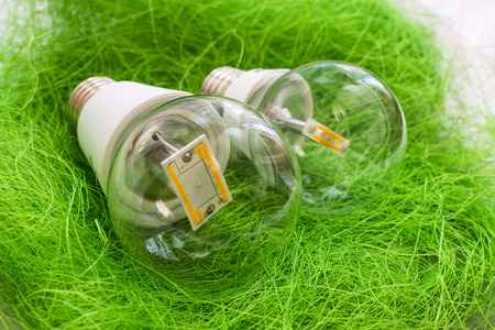 e27: two LED light bulb E27 with different chips in large transparent glass flasks on artificial grass