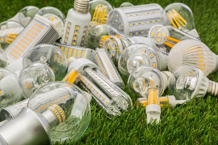 Große Familie von Eco LED-Lampen verschiedener Arten auf dem grünen Rasen Standard-Bild - 73945793