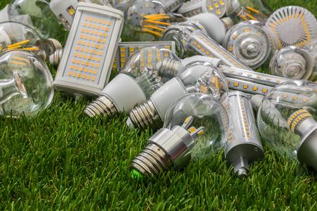 Große Familie von ökologischen und wirtschaftlichen LED-Lampen verschiedener Arten auf dem grünen Rasen Standard-Bild - 73947322
