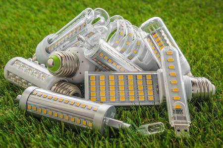 KOLogische und ökonomische LED-Lampen verschiedener Typen auf dem grünen Rasen Standard-Bild - 80279407