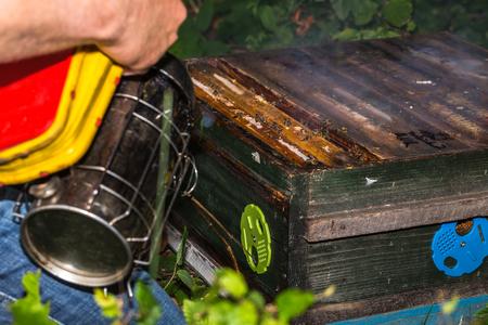 Der Imker bereitet einen Bienenstock vor, der den Raucher zur Überprüfung der Bienenstockrahmen benutzt Standard-Bild - 81017230