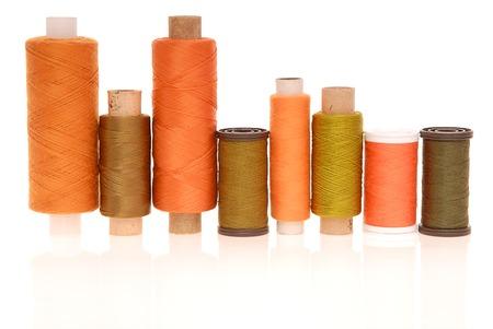 Multicoloured coils are on white