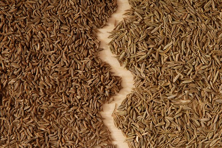 It is a close-up of caraway and cumin seeds.