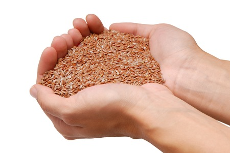 flaxseed: handful of flax-seed is in female hands  Stock Photo