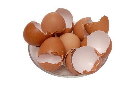 an egg shell: egg shell is on plate