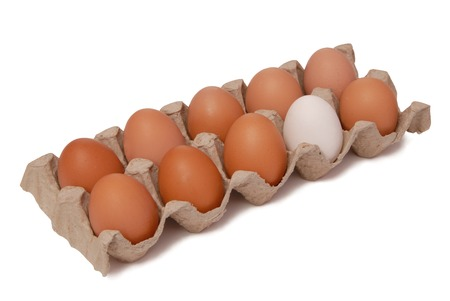 dissimilar: eggs in package