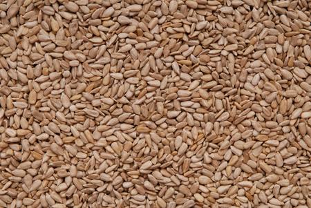 semillas de girasol: semillas de girasol, semechkee, Foto de archivo