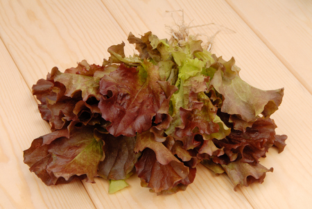 green and purple lettuce,  salad; green ang red salad, fresh salad, red lettuce is on wooden table,  bunch of colorful salad;