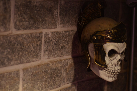 Skull of a Roman soldier with centurion helmet pinned to the wall