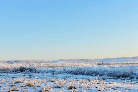 Rural winter landscape, clear blue sky, forests, fields, grass covered with frost in sunny day. High-quality photos