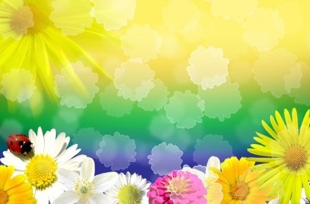 Abstract floral background with various flowers photo