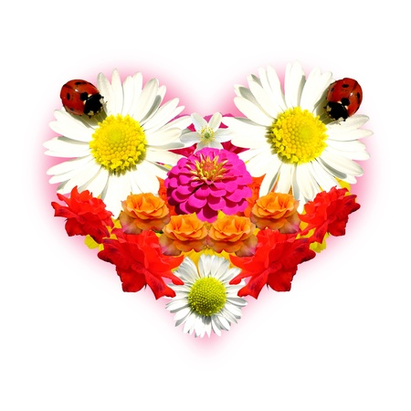 Flower heart photo