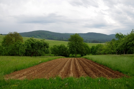 Plowed field Stock Photo
