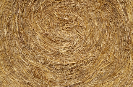 Detail of texture Straw Ball photo