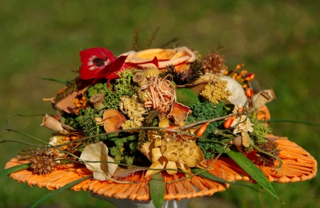 Bouquet of dried flowers photo